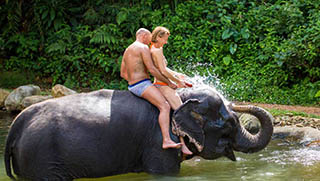Things To Do In Khao Lak - Khaolak Elephant Trekking & Bathing