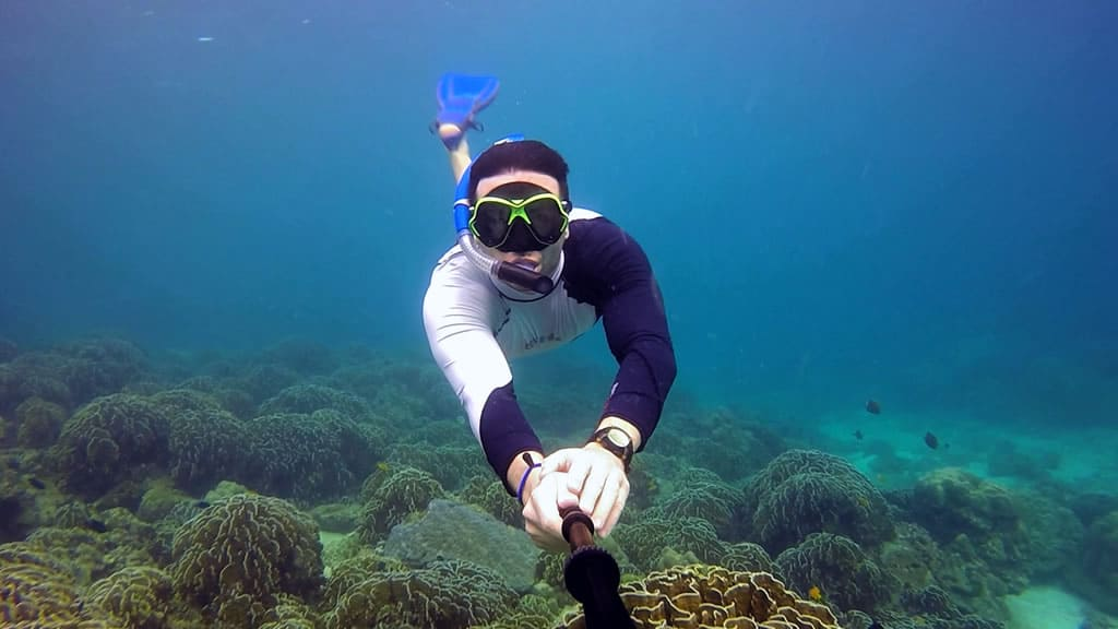 Simialn islands Snorkeling Tours