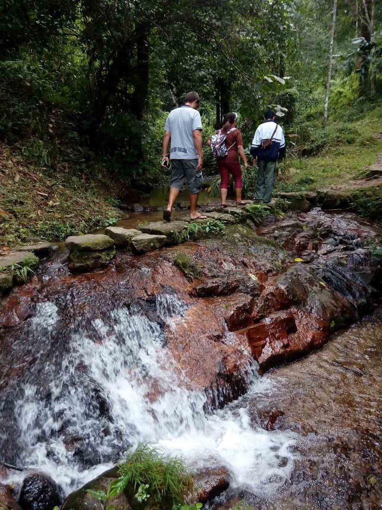 Mae Kampong, Chiang Mai - trekking