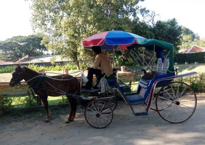 chiang mai,wiang kum kam- horse drawn carriage with guide
