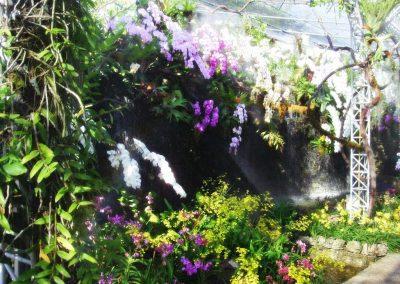 chiang mai, royal flora ratchaphruek - orchids