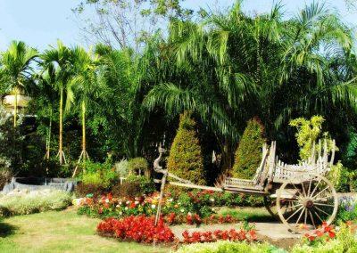 chiang mai, royal flora ratchaphruek - wooden cart