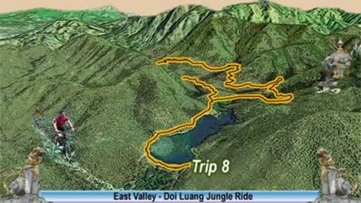 Rain Forest Bike Tour