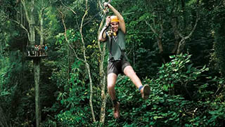 Things to do in Chiang Mai - Flight of The Gibbon