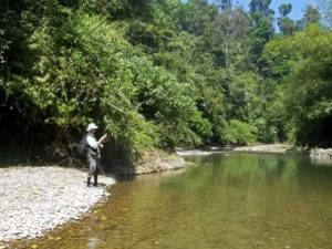 Fishing in Thailand - Fly Fisihing in Khao Sok