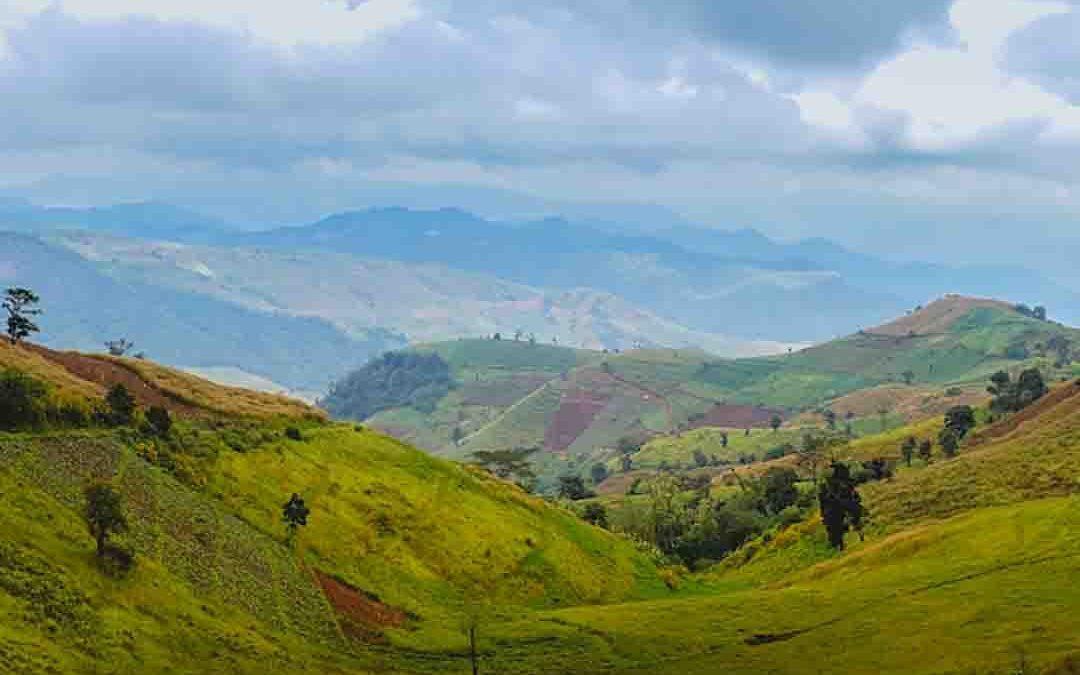 Mae Tho National park